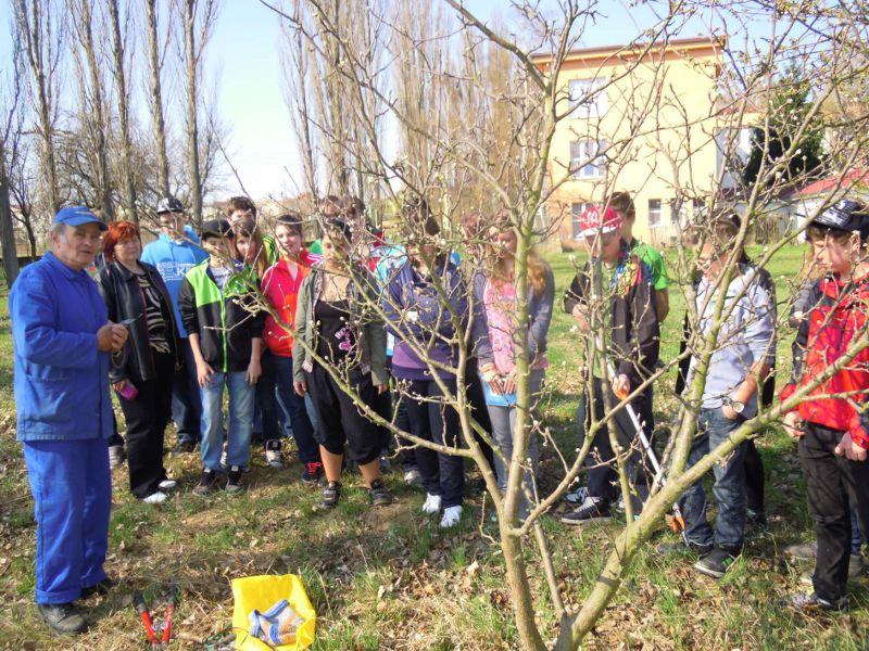 zahradkar2012-04_20120531_1186962333.jpg