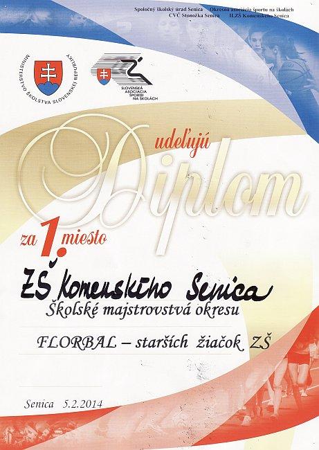 diplom-140205-florbal-1m.jpg